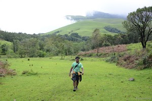 Kudremukh lush green mountains 8