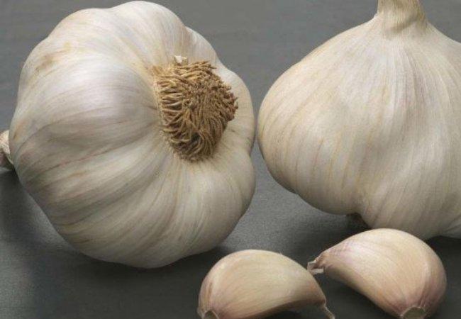 Garlic Treatment