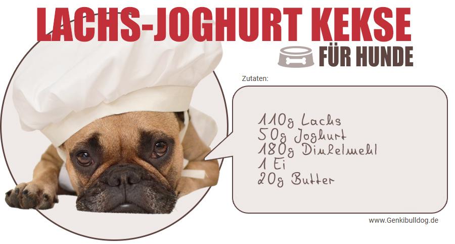 Rezept lachs Joghurt Hundekekse selbst backen
