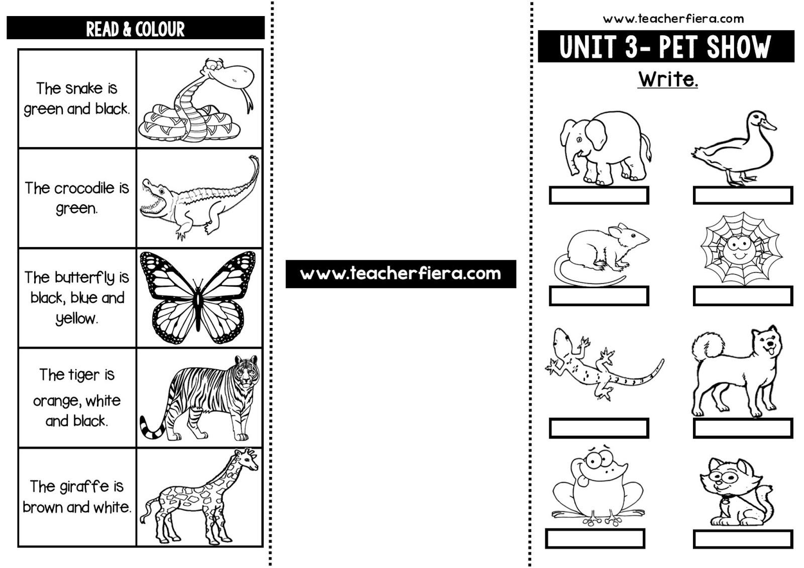 Teacherfiera 06 24