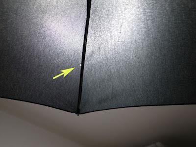 ロベルタ バルディーニの折りたたみ傘