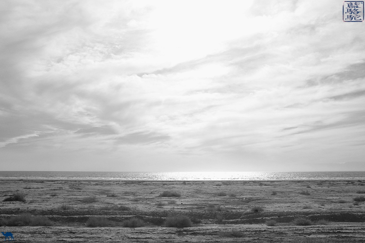 Le Chameau Bleu - Voyage le long de Salton Sea - Californie