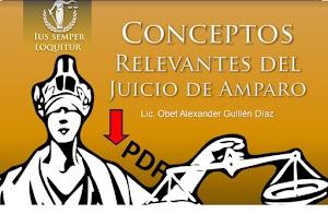 20 Conceptos relevantes del Juicio de Amparo