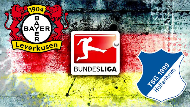 Bayer Leverkusen vs Hoffenheim Full Match Highlights 26/08/2017
