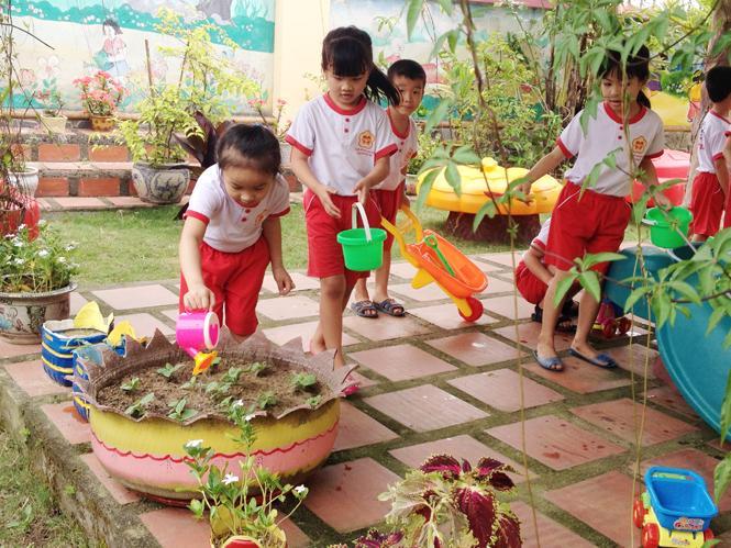 Giáo dục bảo vệ môi trường trong trường mầm non