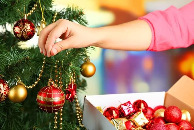 Addobbi Natalizi Quando Toglierli.Il Mondo In Un Giardino Come Recuperare L Albero Di Natale