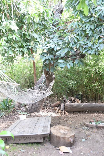 The private property has hammocks and little sitting areas hiding everywhere