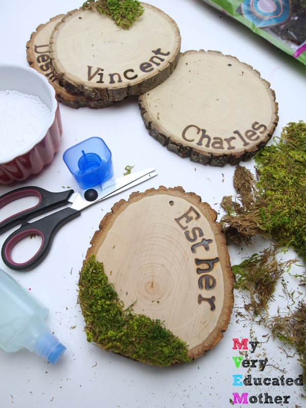 Moss and Snow Ornaments