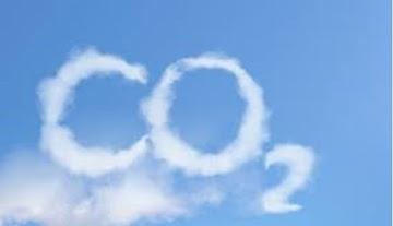 "Dióxido de Carbono sustenta toda a vida na Terra, globalistas dizem ser ""poluentes"""