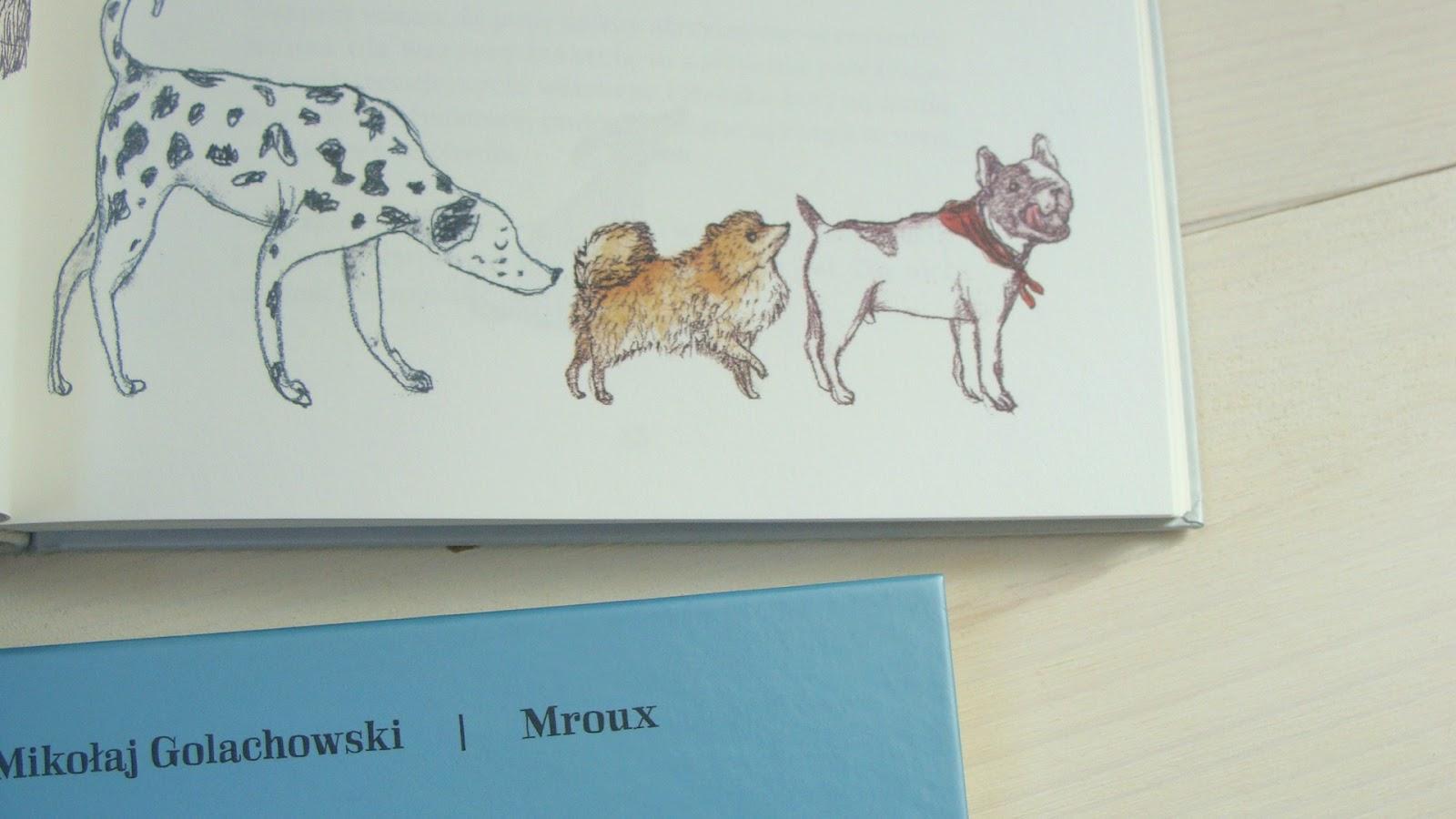 Pupy, ogonki i kuperki, Gęby, dzioby i nochale