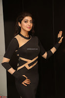 Pranitha Subhash in a skin tight backless brown gown at 64th Jio Filmfare Awards South ~  Exclusive 142.JPG