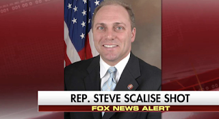 """House Majority Whip Steve Scalise and Aides SHOT, Lawmaker Asked, """"Are Those Republicans or Democrats?"""""""