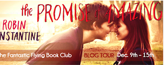 WW4BB & FFBC Present: A Review of The Promise Of Amazing by Robin Constantine