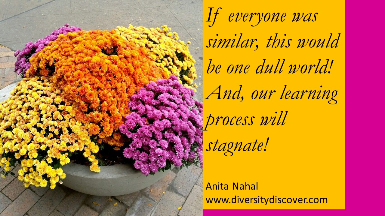 Diversity And Inclusion Quotes Quotes Poems And Thoughtsanita Nahal  Diversity And