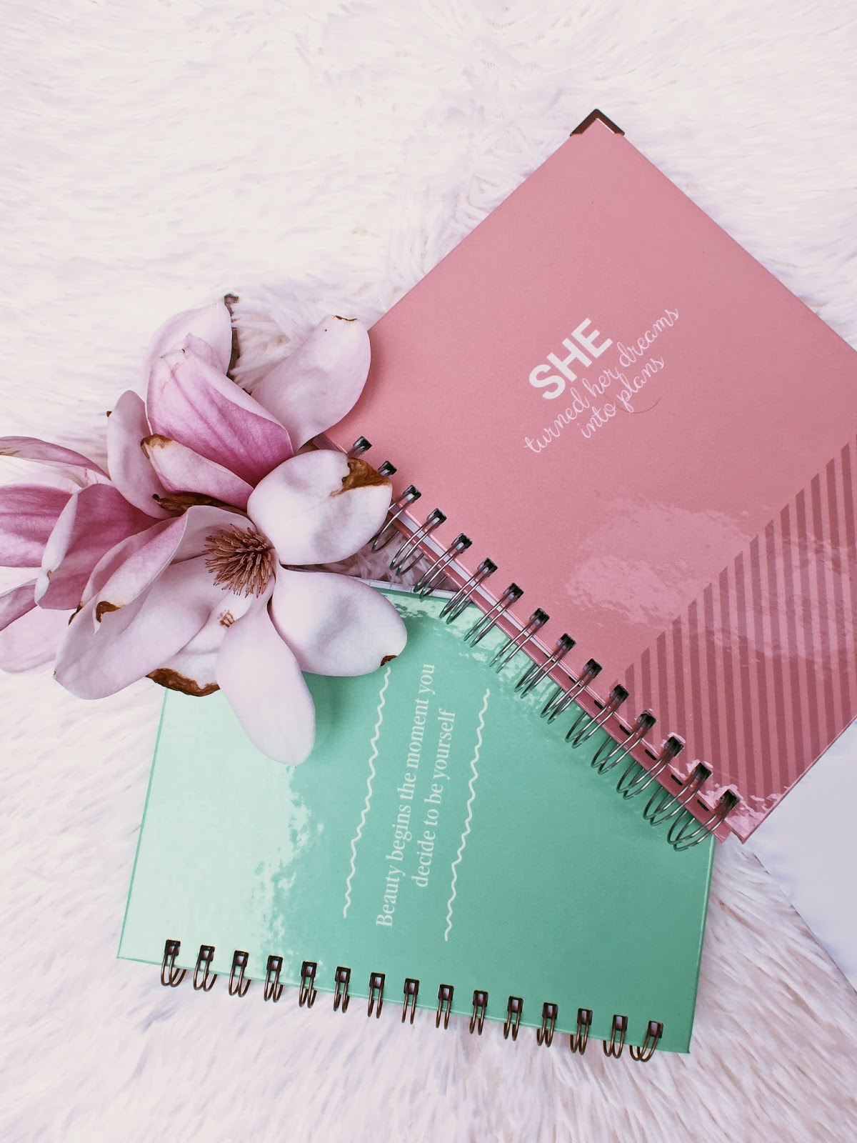 REVIEWING VIVECON JOURNAL PLANNER