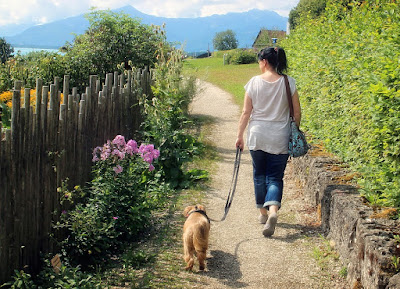 Walking Can Help You Lower Your Blood Pressure and Strengthen Your Heart
