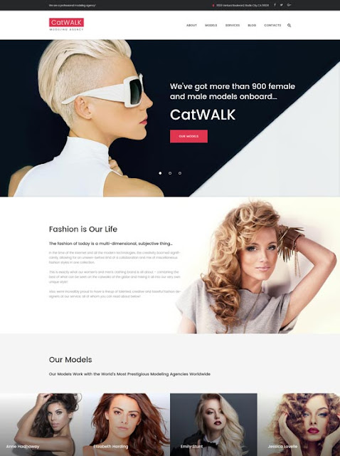 Catwalk WordPress Teması