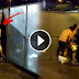 Couple Caught Banging Each Other on the Corner of Backstage While Concert is On Going!