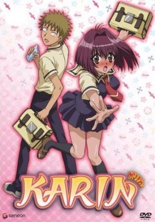 Karin [BATCH]