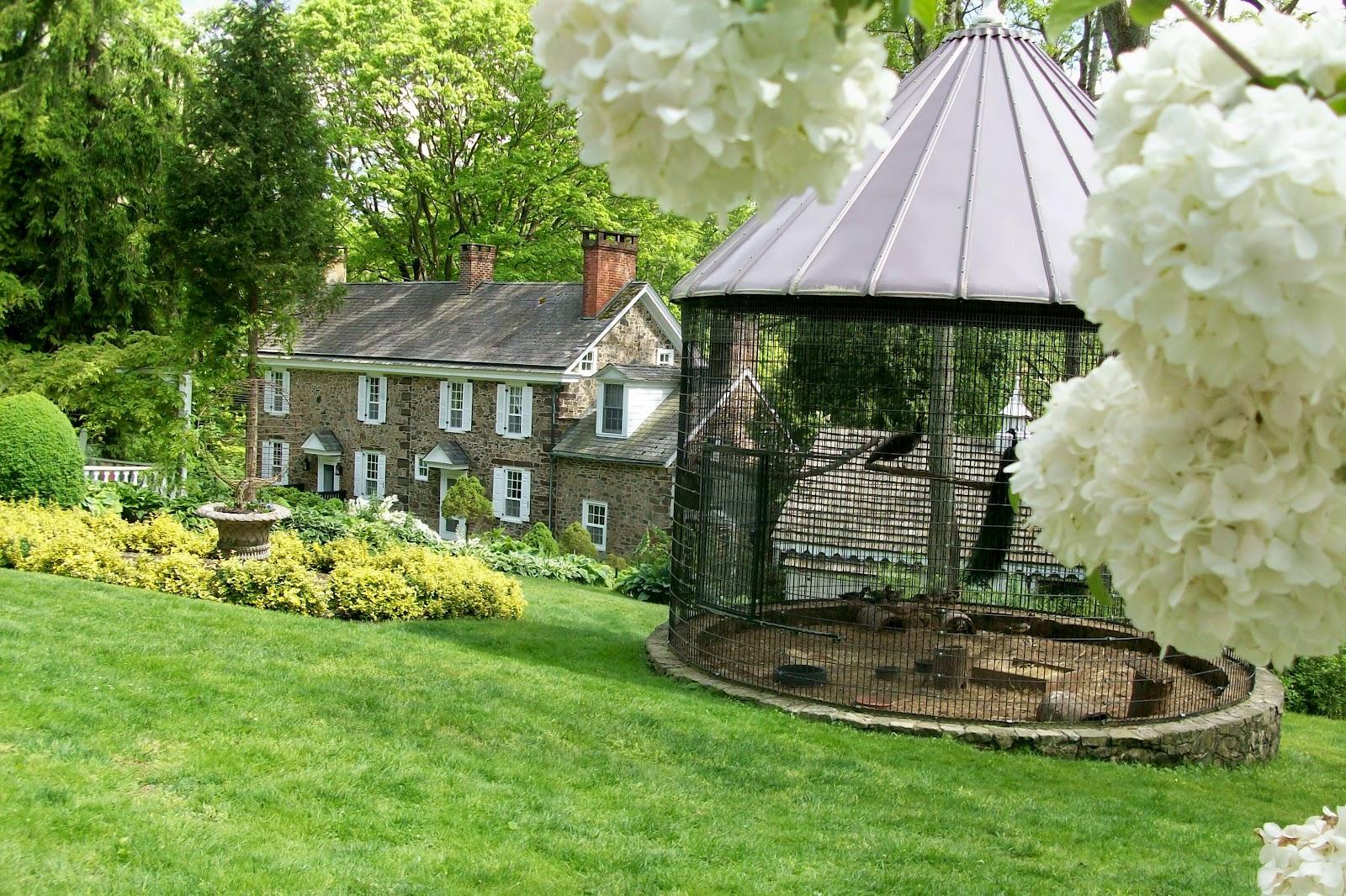 A Garden in Bethlehem PA: Inclusion Body Myositis (IBM)
