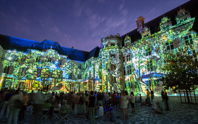 Blois castle sound and light show Loire Valley children kids