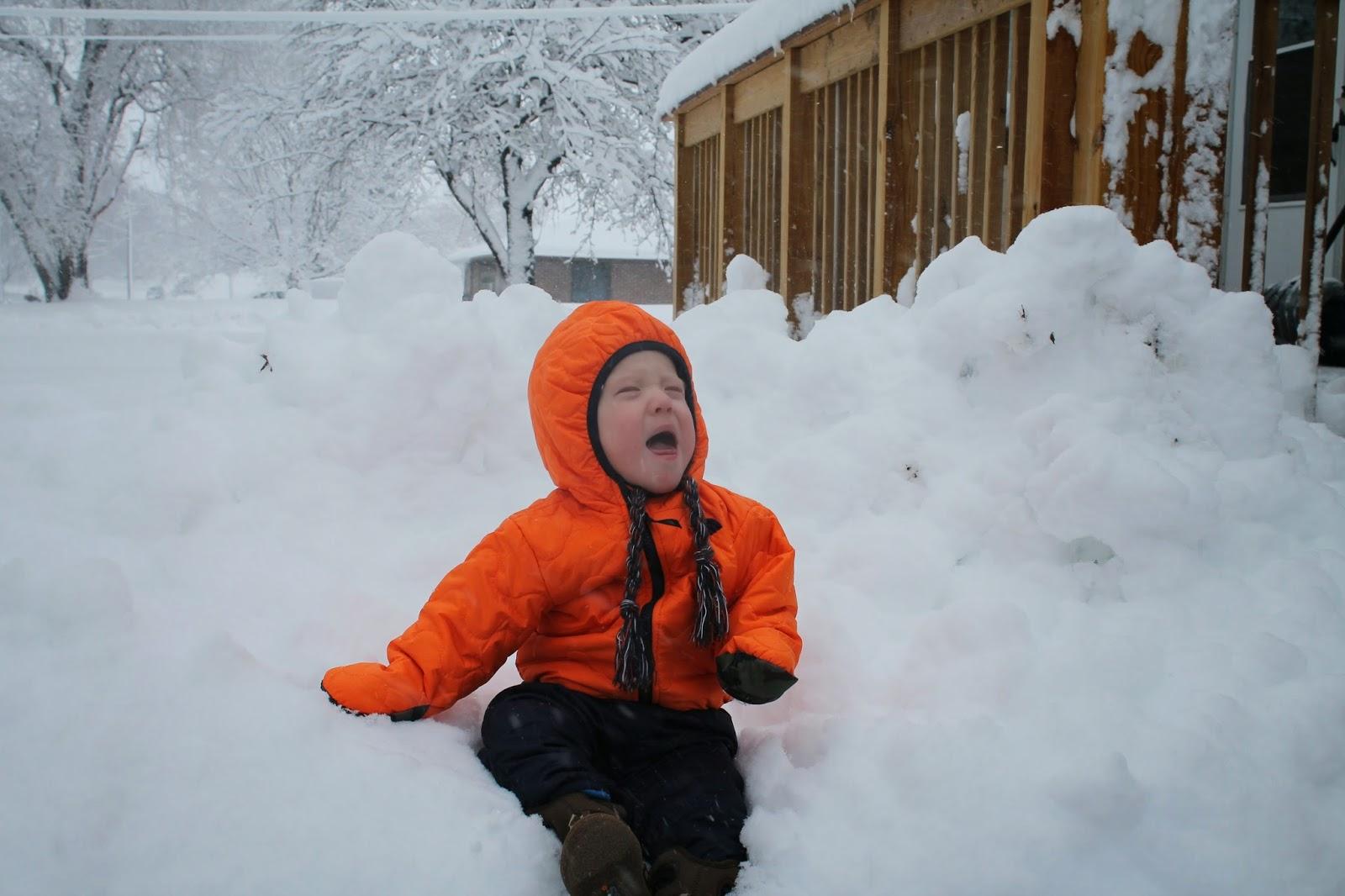 Mdzg One Snowy Day