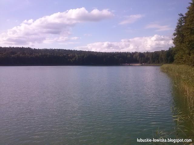 Jezioro Kałek (Gryżyńskie, Wapienne) - Gryżyna
