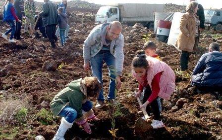 مبادرة أولى من نوعها لزراعة مليون شجرة في السويداء