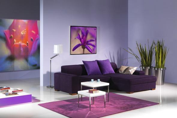 Salas de color morado colores en casa for Color gris para pintar casa