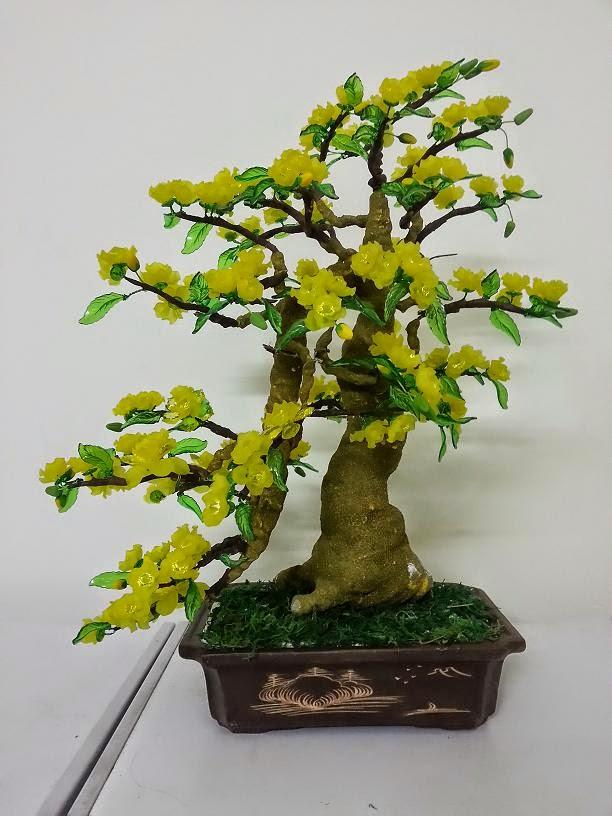 Goc bonsai cay ho mai tai Tran Quoc Hoan