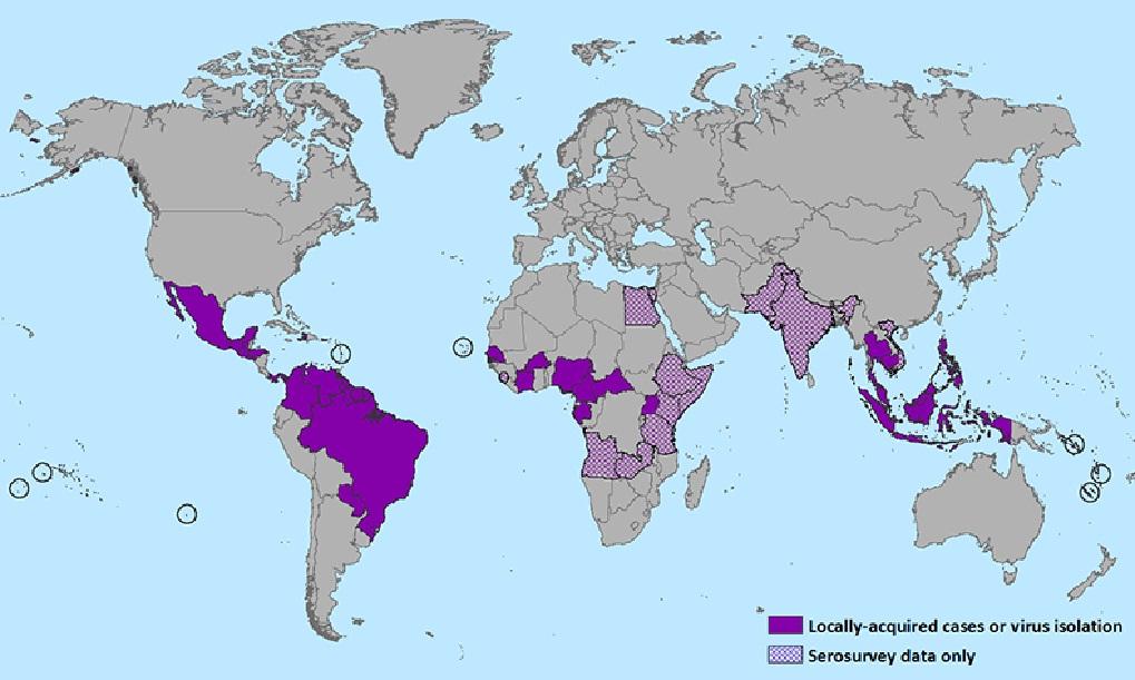 Peta Penyebaran Virus Zika