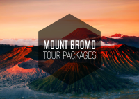 mount bromo tour packages