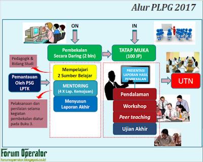 Juknis Aplikasi Pra Kondisi/Pembekalan PLPG Tahun 2017