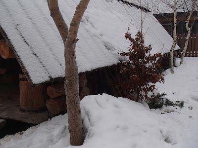 Orawa, Babia Góra, zima na Orawie, jazda na sankach, zima na Babiej Górze