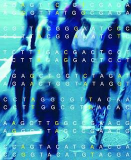 Transposon Genetik