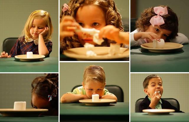 Resultado de imagen de experimento marshmallows
