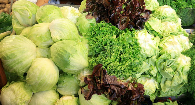 A selection of freshly harvested lettuce on display