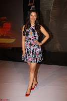 Kyra Dutta in a Deep neck Small Dress at Shamanthakamani pre release function ~  Exclusive 107.JPG