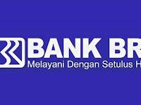 BUMN BANK BRI - Program Pengembangan Staf (PPS) IT