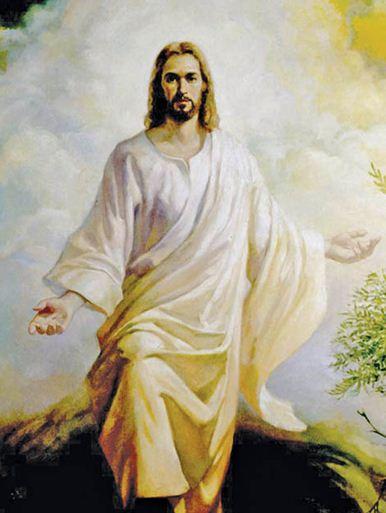 La Madonna Miracolosa: E RISORTO!