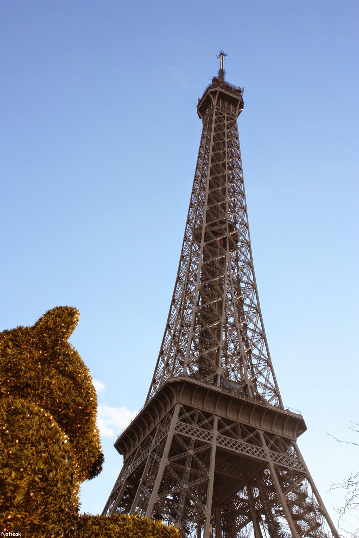 nounours 2014 Le marché du Trocadero