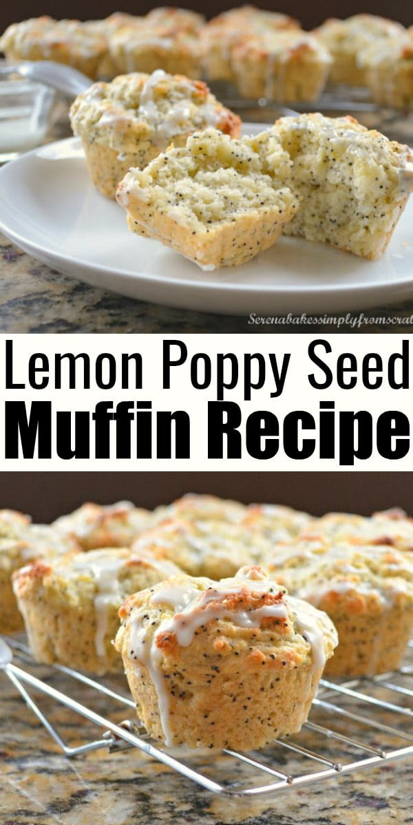 Lemon Poppy Seed Muffins are a favorite breakfast or Brunch recipe! Deliciously easy for brunch from Serena Bakes Simply From Scratch.