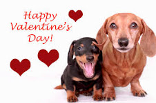 We Love Doxies!