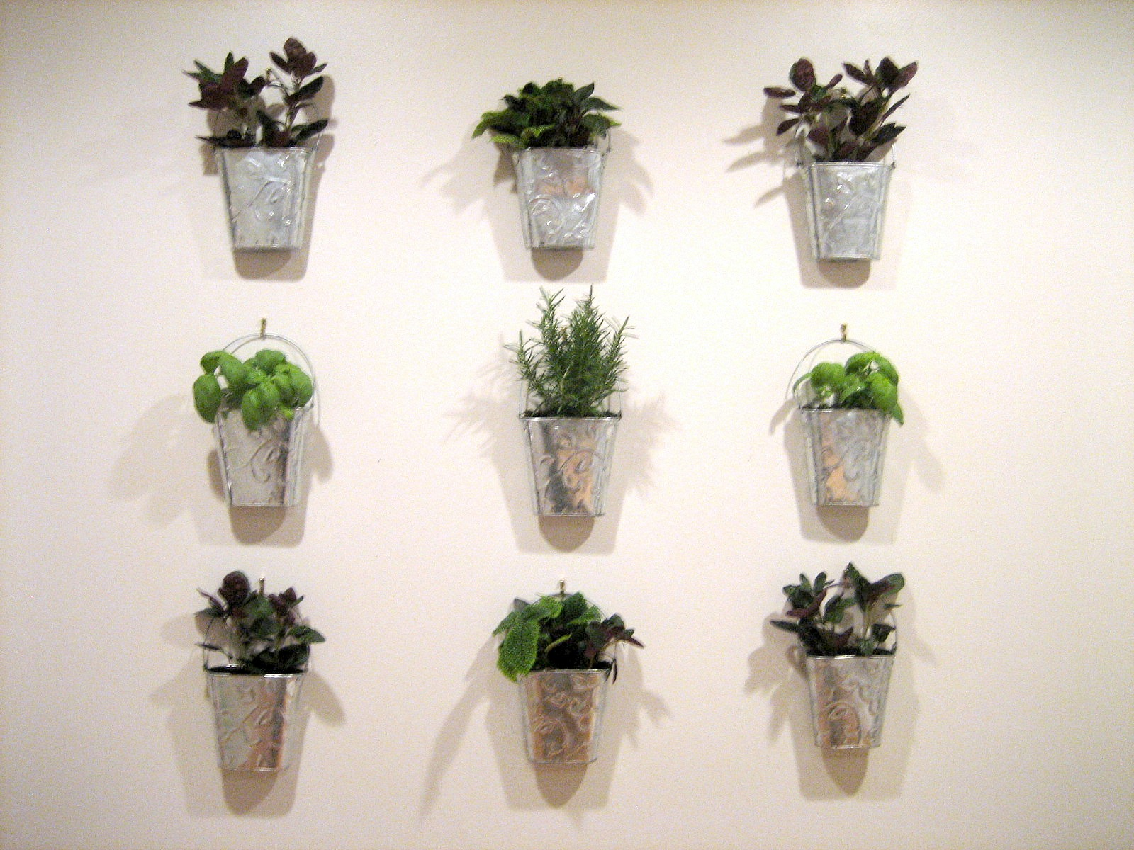 Hanging Indoor Herb Garden Guest Project Make A Kitchen Garden Wall