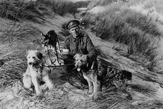http://www.abc.net.au/news/2017-04-23/irish-terriers,-the-little-red-dogs-that-went-to-war/8442204?sf72737287=1