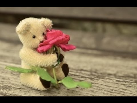 10 Cara Ampuh Mendapatkan Hati Wanita Idaman