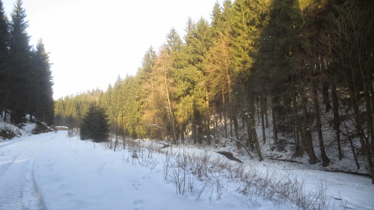Schneeschuhwandern im Frankenwald,