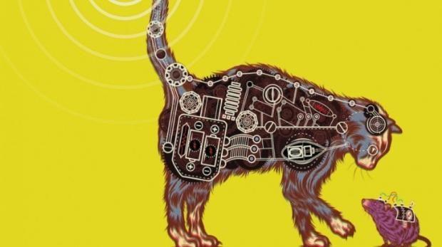 Duyduğunuza Şaşıracağınız İlginç Bilgiler - Akustik Kedicik - Kuru Gücü