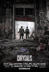 Dịch Bệnh Chrysalis