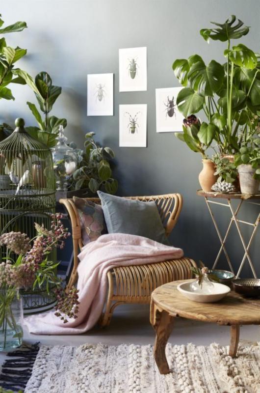 Mobiliario natural y plantas